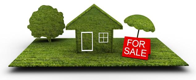 Land Foreclosure